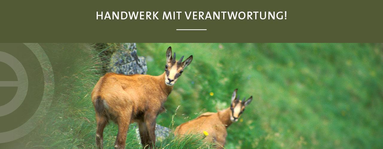 Jagd Österreich Lebensräume
