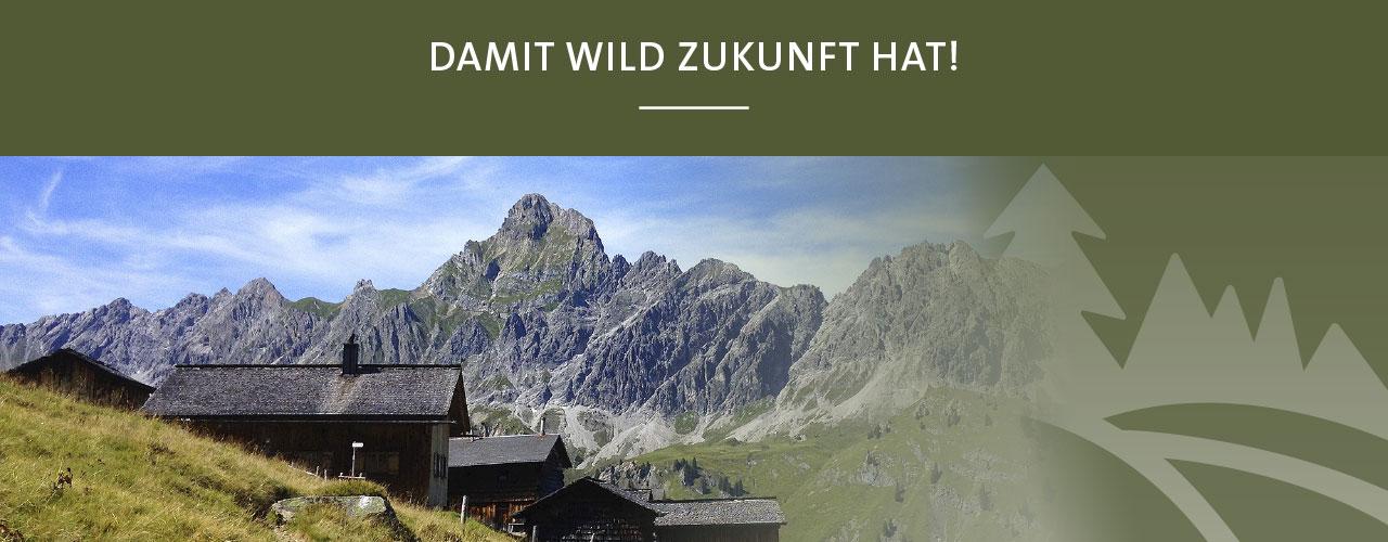 Jagd Österreich Zukunft