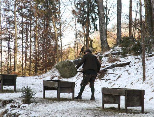 Presseinformation: Schneechaos verschärft Notzeit für Österreichs Wildtiere!