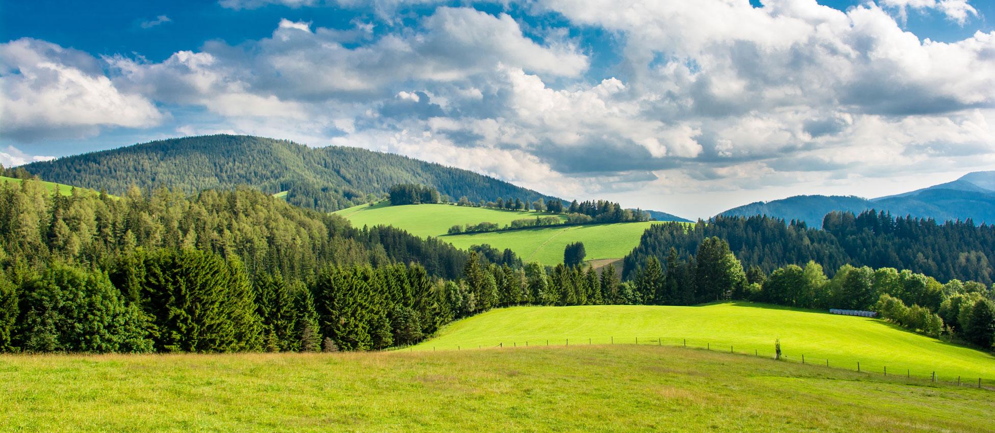 Jagd Österreich, Kompetenzen - Lebensraum