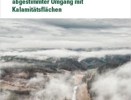 Managementplan für den Umgang mit Kalamitätsflächen vorgestellt