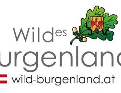 """Presseinformation Burgenland: """"Wildes Burgenland"""""""