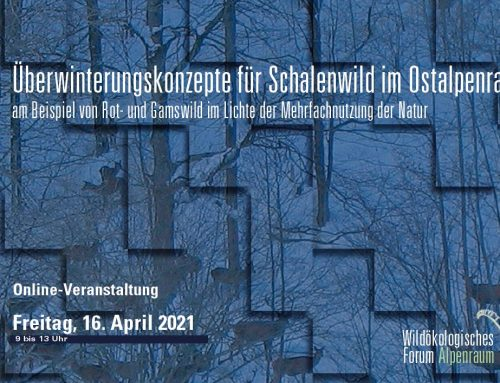 Online-Webinar: Wildökologisches Forum 2021